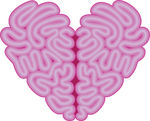 Heart shapped brain